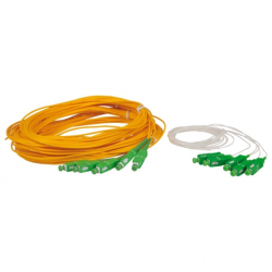 Patchcords and Pigtails